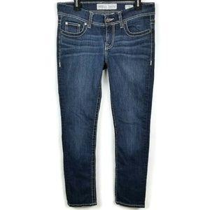 BKE Dakota Skinny Dark Wash Stretch Denim Jeans 28